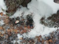 В городе Челябинске сотрудниками Управления по контролю за оборотом наркотиков ГУ МВД области ликвидирован наркопритон
